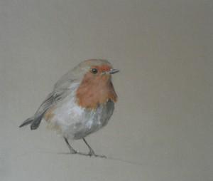 Robin 30 cm x 26 cm £55.00