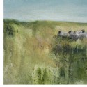 2007<br />